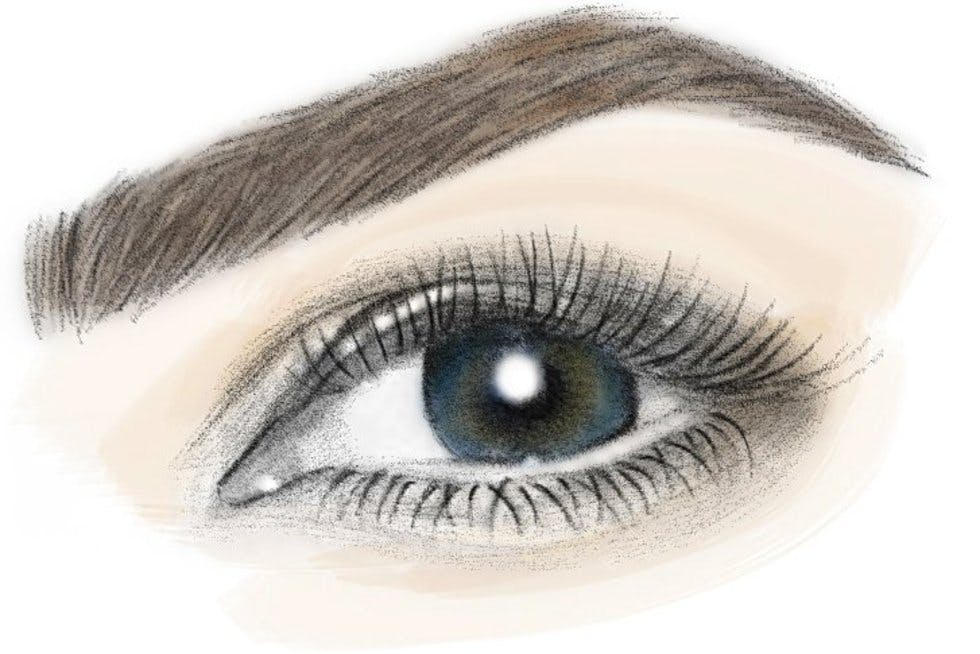 Drawing Arched Eyebrows