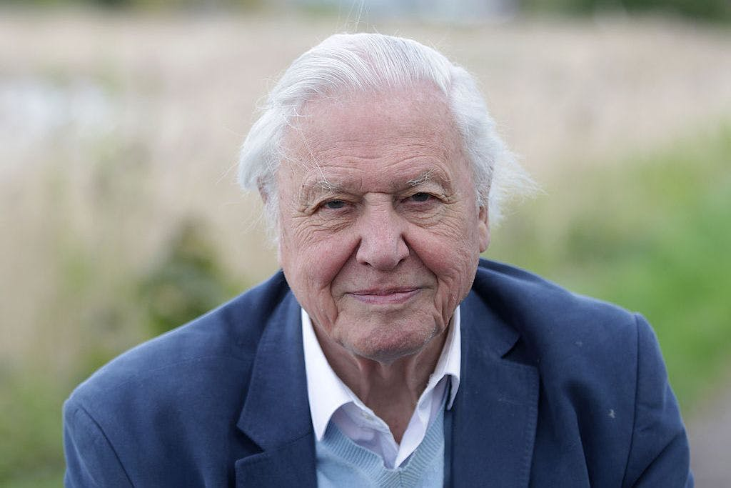 LONDON, ENGLAND - APRIL 30: Sir David Attenborough opens Woodberry Wetlands on April 30, 2016 in London, United Kingdom. (Photo by Danny Martindale/WireImage)