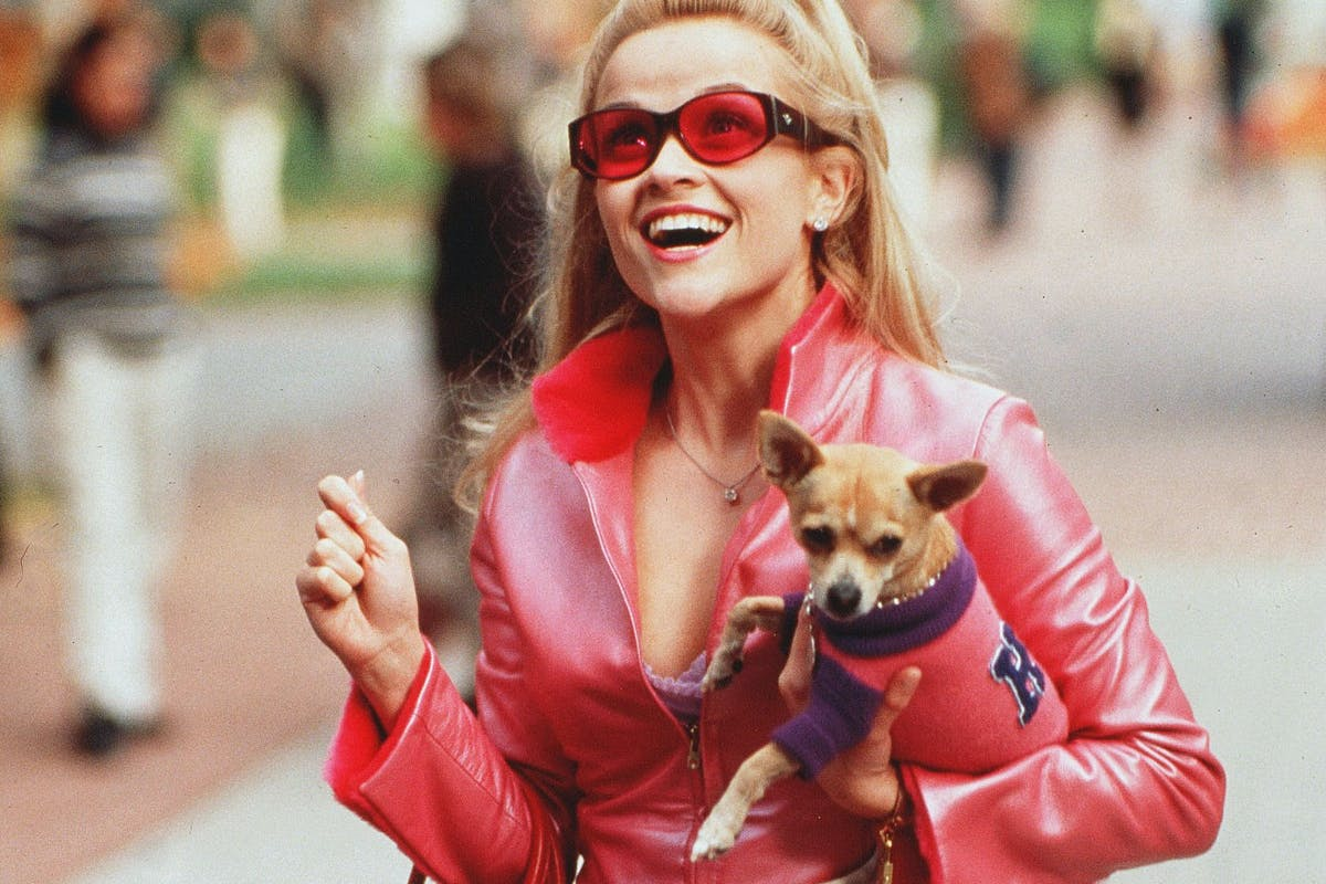 Reese Witherspoon in a scene from Legally Blonde