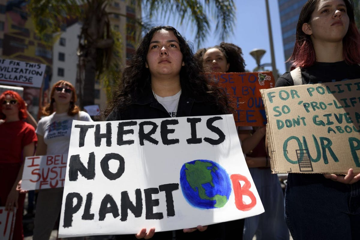 "Young woman at climate change protest holding a placard with the words ""There is no planet B"""
