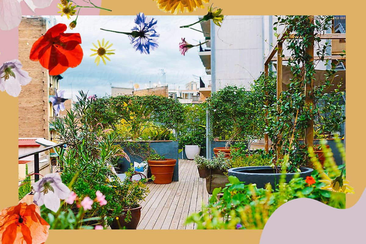 5 ways to start urban gardening, however small your space