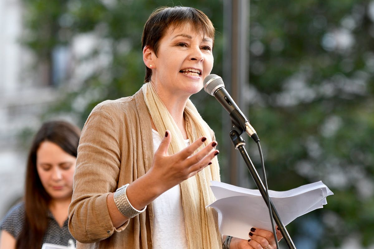 The glaring problem with Caroline Lucas' all-female Brexit cabin