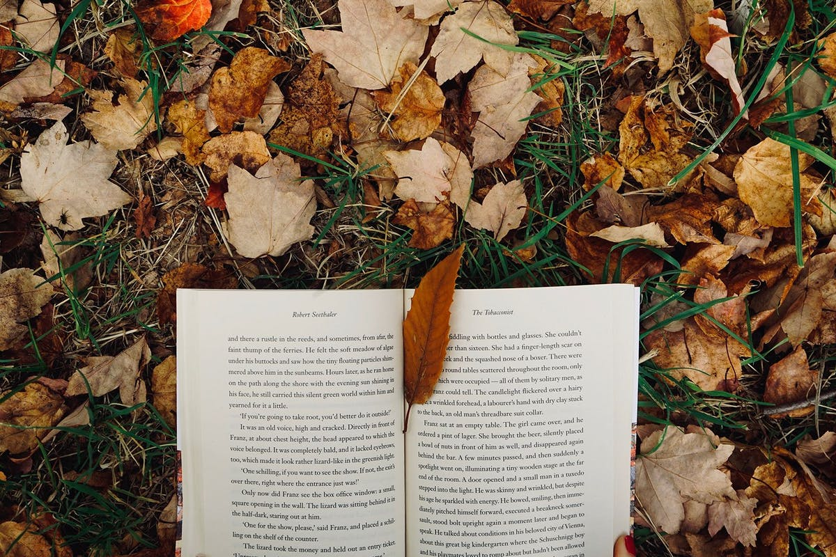 10 beautiful literary quotes to get you excited about autumn