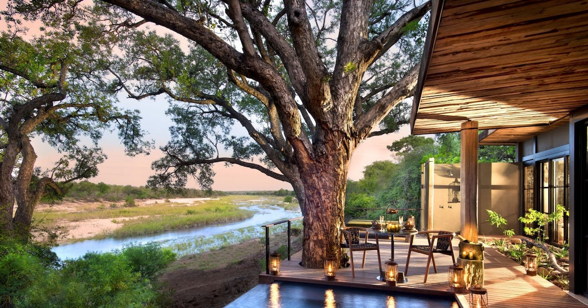 Safari holidays: Discover your inner animal lover on a South African safari