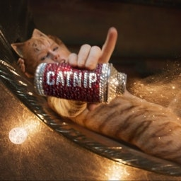 Cats has been re edited to amend hilarious CGI mistakes in film