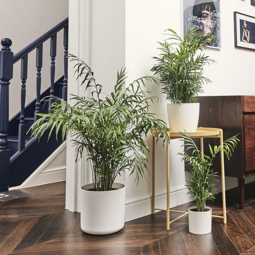 Best Interiors Instagram Accounts To Follow For Decor Inspiration,Subway Tile Backsplash Ideas For Granite Countertops