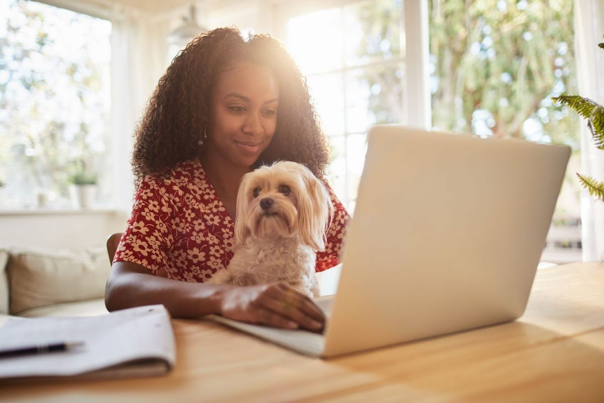 Young woman sitting with her dog and using a laptop - stock photo