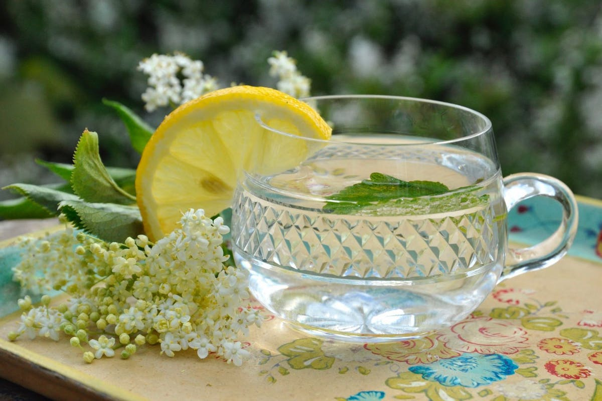 A glass mug of elderflower cordial, with a slice of lemon hooked on the rim