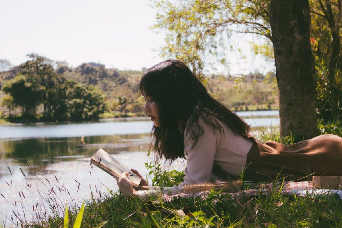 The best summer reads for 2020