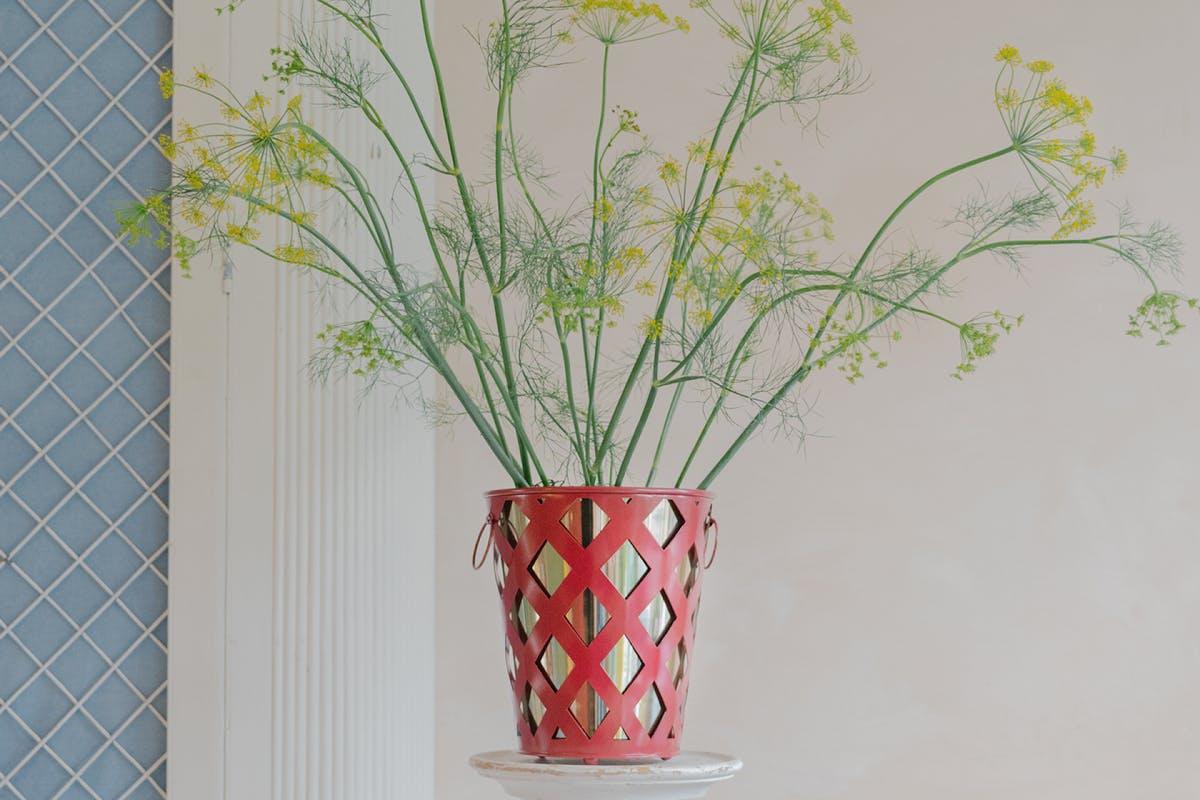 Matilda Goad plant pot