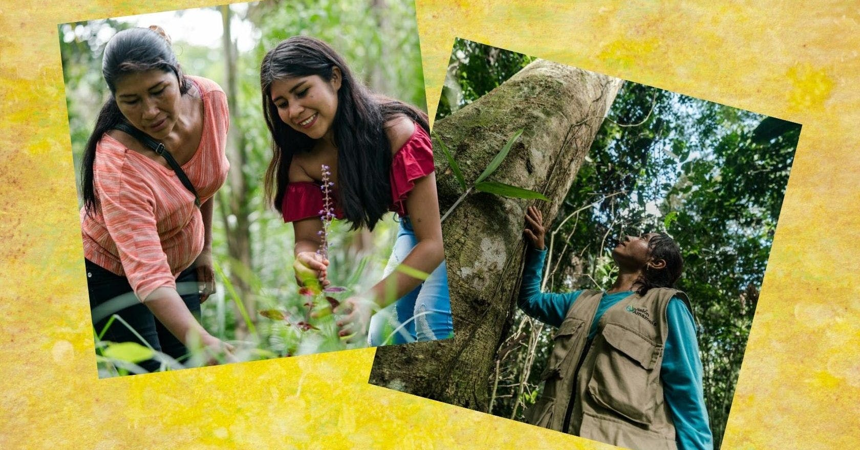 Meet the women fighting to save the Amazon rainforest