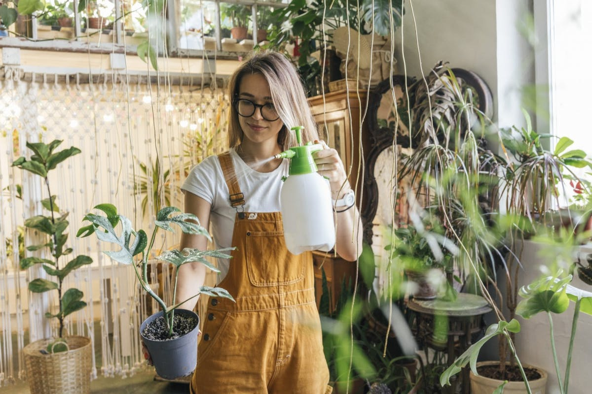 A woman misting her plants