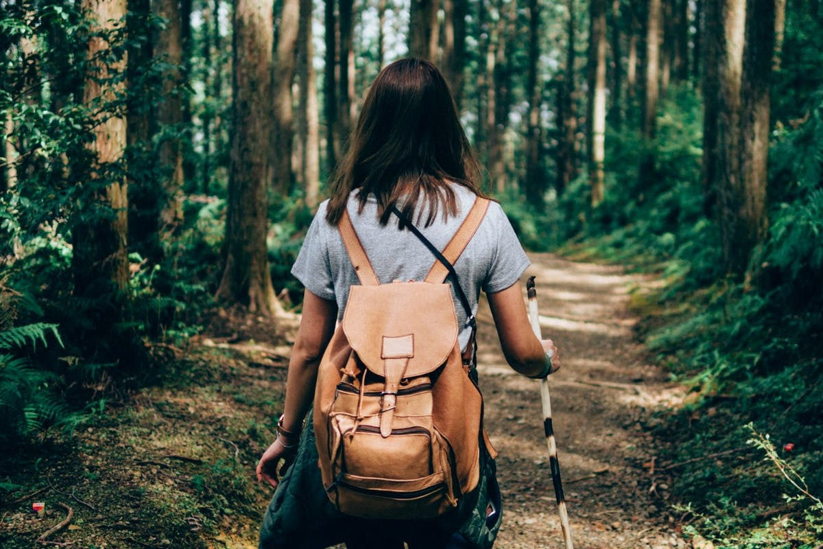 Back of a woman as she walks through a forest