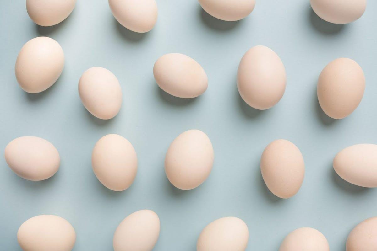 Egg freezing podcast