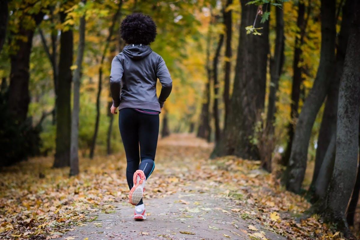 Autumn run