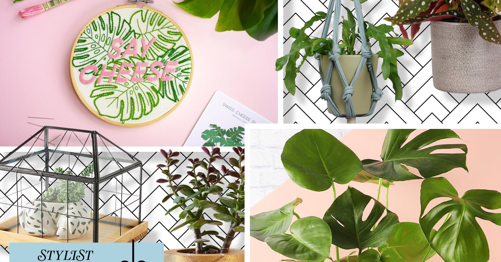 Stylist Loves Christmas: 22 gift ideas for all of your green-fingered friends