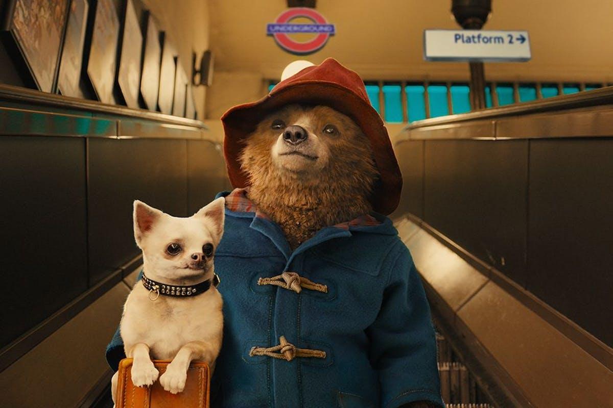 Paddington bear in the first Paddington film