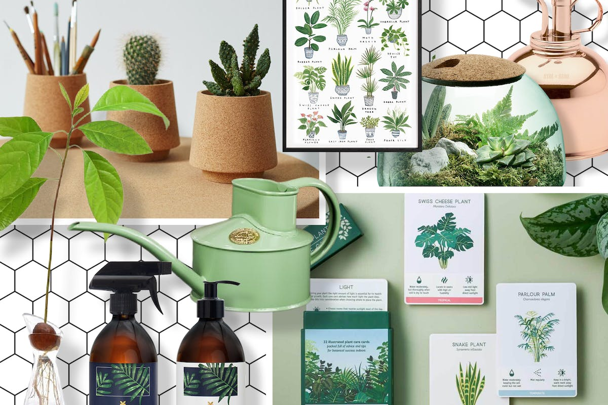 Gifts for green-fingered friends