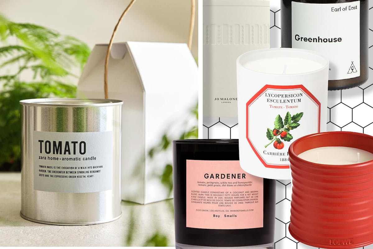 Best tomato scented candles