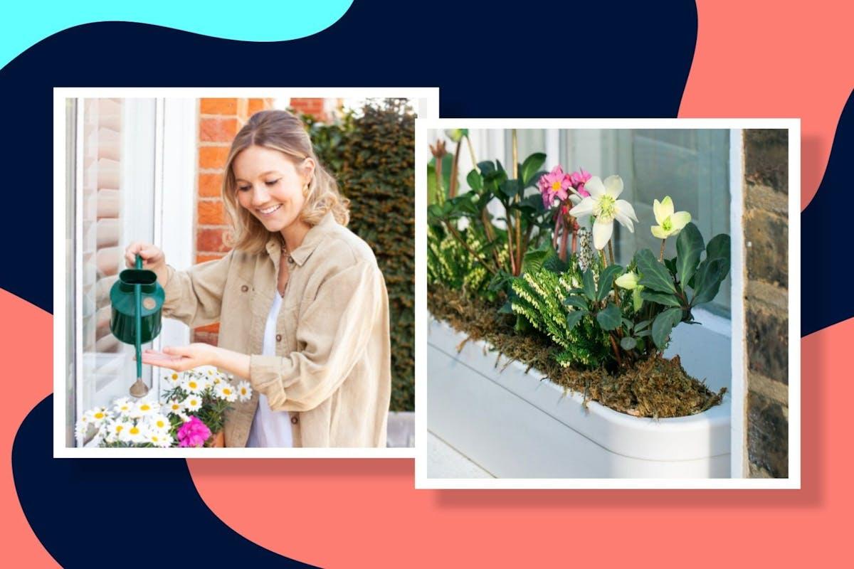 Window Fleur garden window box tutorial