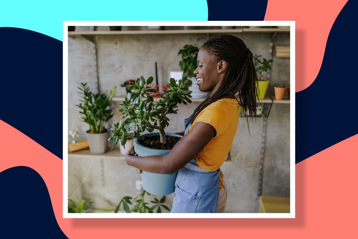 how-to-gardening-hacks