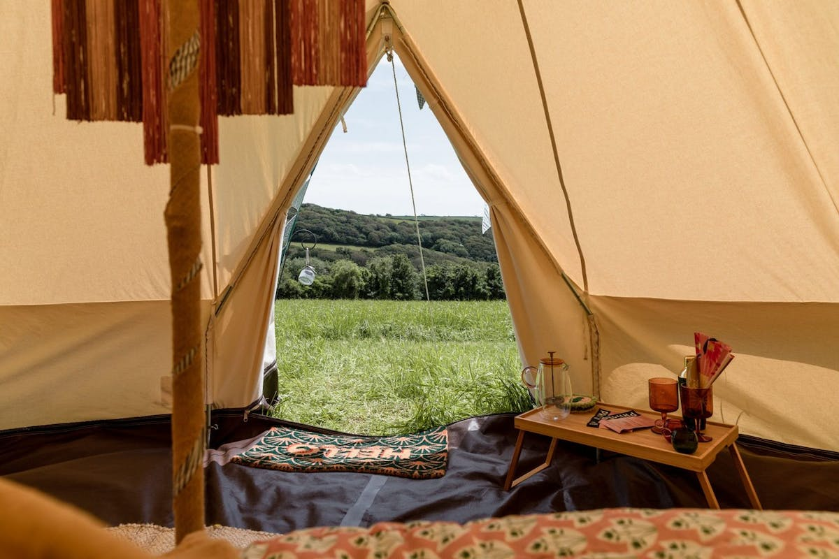canopy-stars-camp-out-2021-kym-grimshaw-6