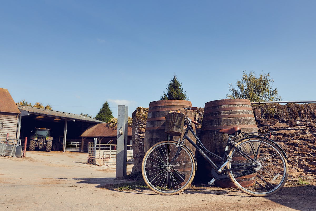 Go on a cycling tour of cider country in Herefordshire.