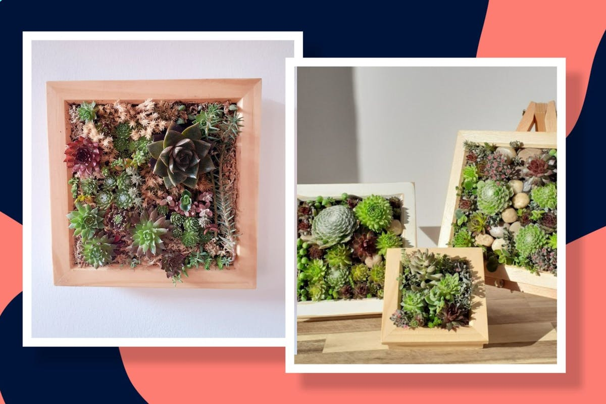 how-to-succulent-picture-frame
