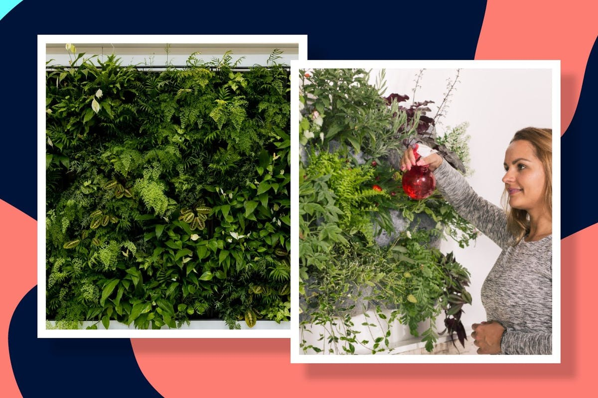 how-to-living-wall