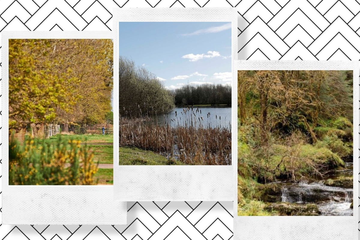 A collage of autumn walking locations